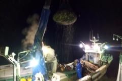 芦野漁業部